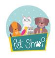 pet shop dog hamster cat parrot animals vector image vector image