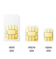 Set of SIM cards of different sizesmini micro nano vector image vector image