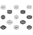 set vintage retro styled premium design labels vector image