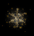 snowflake with gold glitter texture christmas vector image vector image