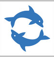 two dolphins circle vector image