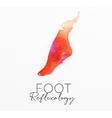 Beauty natural spa foot vector image