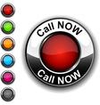Call Now button vector image vector image