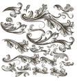 collection of hand drawn floral swirls for design vector image vector image
