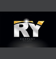 combination letter ry r y alphabet with gold vector image vector image