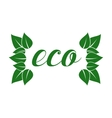 Eco friendly sticker tag or label with green vector image