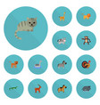 flat icons horse reptile panther and other vector image vector image