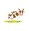 funny cow isolated icon vector image vector image