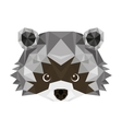 raccoon head low poly isolated icon vector image vector image