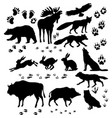 wild animals and birds silhouette vector image