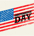 happy independence day usa celebration rough vector image vector image