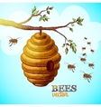 Honey bees and hive on tree branch background vector image