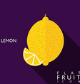 Lemon flat icon with long shadow vector image