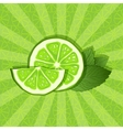 lime and mint background vector image vector image