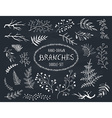 doodle brunches vector image vector image
