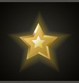 golden bright shiny stars vector image