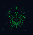 green lined cannabis leaf silhouette on black vector image vector image