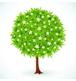 Round green tree with flowers vector image