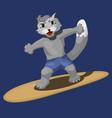 a cute cat surfer cartoon vector image
