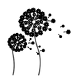 black silhouette dandelion with stem and pistil vector image vector image