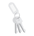 Blank tag and keys vector image vector image
