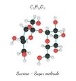 C12H22O11 Sucrose sugar molecule vector image vector image
