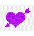 cupid arrow violet pierced heart with ornament vector image vector image