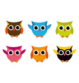 Cute Collection of Bright Owls vector image vector image