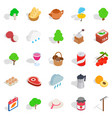 eat vegetable icons set isometric style vector image vector image