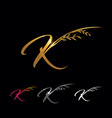 golden letter k monogram initial sign vector image vector image