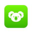 koala icon digital green vector image