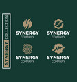 modern professional set logos synergy for vector image vector image