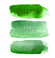 set of green brush strokes watercolor vector image vector image