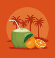 summer and beach concept vector image vector image
