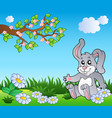 bunny on meadow with daisies vector image vector image
