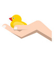 cute small duck in human hand isolated on white vector image
