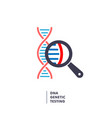 dna genetics research dna chain in magnifying vector image vector image