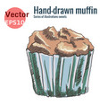 hand-drawn chocolate muffin isolated on a white vector image vector image