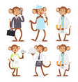 monkeys rare animal cartoon macaque like vector image vector image