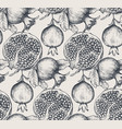 seamless pattern with pomegranate fruits vector image vector image
