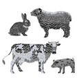 set stylized farm animals collection of vector image