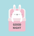 sleeping rabbit bunny baby pet animal collection vector image