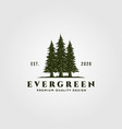 evergreen logo vintage design pine trees logo vector image vector image