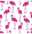 flamingo isolated exotic bird silhouette vector image