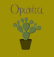 flat stylish background plant opuntia vector image