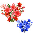 two bouquet of red and blue lilies vector image vector image
