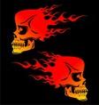Flaming Skulls vector image vector image