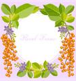flower frame2 vector image vector image