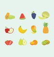 fruit set collection with various shape and vector image vector image