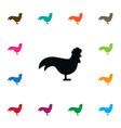 isolated bantam icon chicken element can vector image vector image